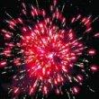 Фейерверк - салют Р7015 Кактус (0,6