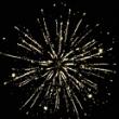 Римские свечи РС5352 Гордая лилия  (1