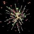 Фейерверк - салют  РС7460 / РС769 Вкус Нового года (1