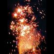 Фонтан РС4540 / РС471 Цветок папоротника