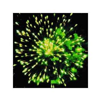 Фейерверк - салют ЕС440 Полный песец (1