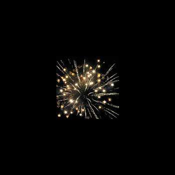 Фейерверк - салют РС6010 Зимние каникулы (0,6