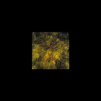 Фейерверк - салют РС6932 / ТС642 Снегири (0,8