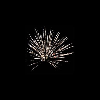Фейерверк - салют Фейерверк ТС610 Золотая рыбка (0,8